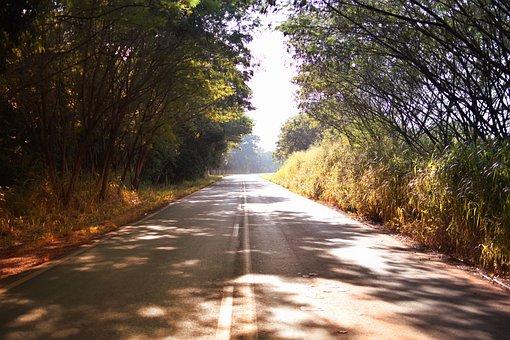 Path, Asphalt, Lane, Highway, Nature, Road, Green