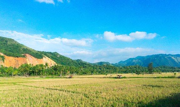 Landscape, Mountain, Mountain Landscape, Sky, Forest