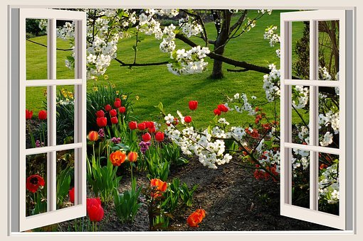 A Beautiful Day, Good Mood, Joy, Tulips, Flowers