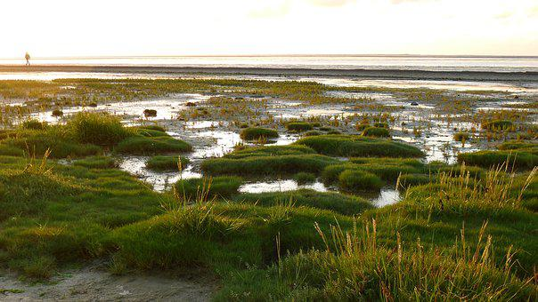Wattenmeer, Wadden Sea, Neuharlingersiel, North Sea