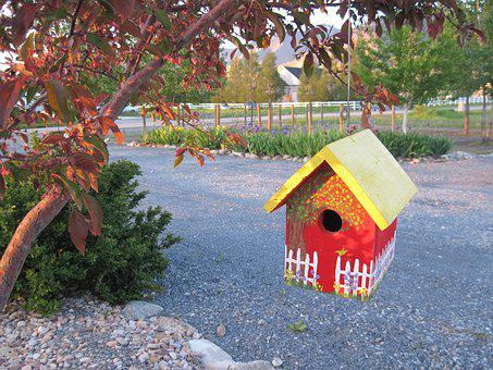 Bird House, Country Whimsy, Country, Birdhouse In Tree