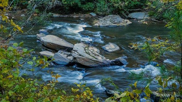 Stream, Trout Stream, Nature, Water, Landscape, Creek