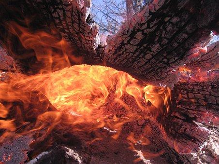 Fire, Wildland Fire, Log, Wildland, Forest, Nature