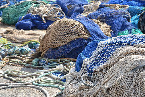 Net, Fish, Sea