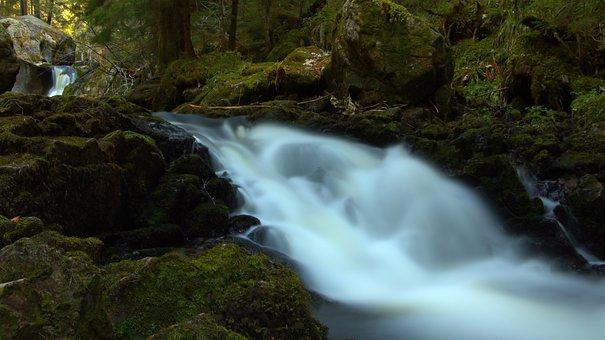 River, Forest, Spring, Nature, Summer, Rock, Landscape