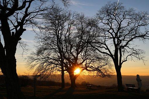 Sunset, Nature, Nature Conservation, Spring, Landscape