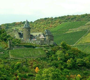 Vineyards, Rhine, Nature, Germany, View, Wine