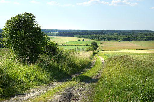 Landscape, Fields, Agriculture, The Cultivation Of