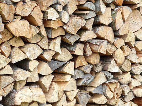 Wood, Structure, Texture, Background, Tree, Log, Forest