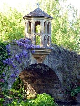 Bridge, Garden, Wisteria, River, Nature, Landscape