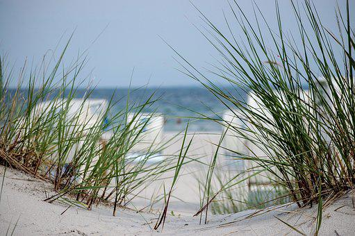 Beach, Dune, Dunes, Dune Grass, Grass, Sand, Sea