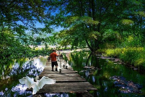 Park, Hobbies, River, Child, Farm, Breeding