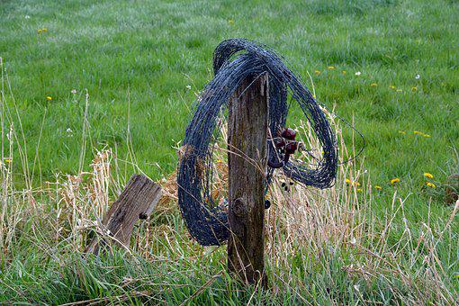 Pasture Fence, Barbed Wire, Fence, Demarcation, Post