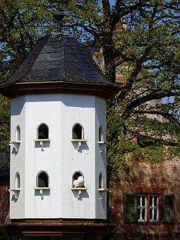 Dove, Bird, Animal, Nature, Dovecote, Building