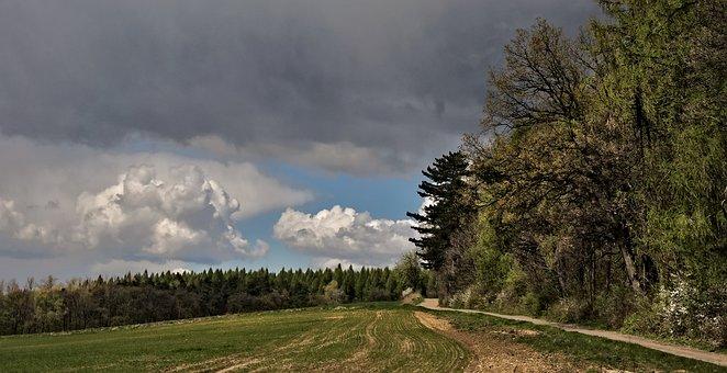 Landscape, Clouds, Forest, Way, Poland, Field, Sky