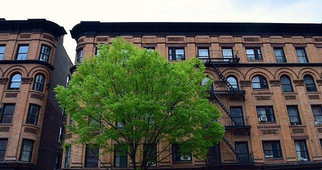 Building, Urban, Tree, City, Architecture, Design