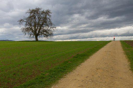 Autumn Walk, Lane, Away, Clouds