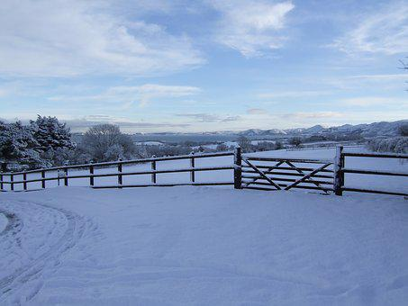 Snow, Fence, Field, Coastal, Winter, White, Cold