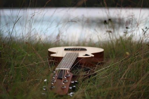 Guitar, Tacoma, Wp Strings, Grass