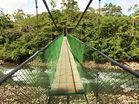 Suspension Bridge, Costa Rica, Water, Jungle