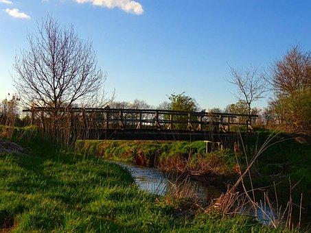 Nature, Bridge Brook, Bach, Water, Blue Sky, Landscape