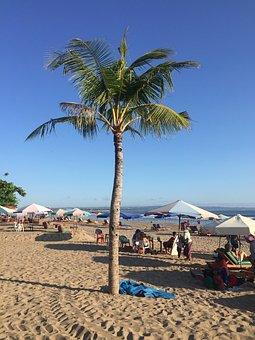 Beach, Palm Trees, Bali, Asia, Travel