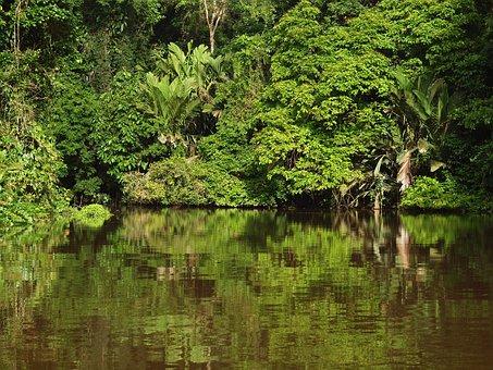Tortuguero National Park, Costa Rica, Tropics