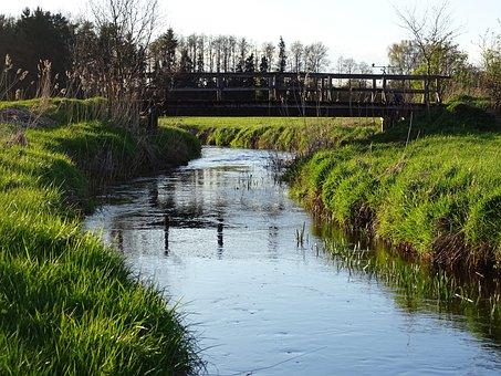 Nature, Bach, Water, Wooden Bridge, Bridge Brook, River