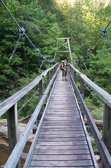 Bridge, Climbing, Adventure, Nature, High, Summer