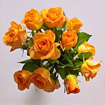 Bouquet, Yellow Roses, Roses, Fragrant, Large Flowers