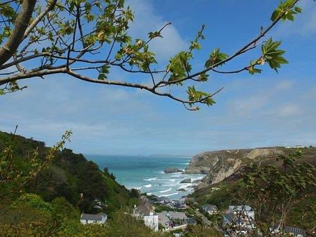 Coastal, Scene, Beach, Sea, Ocean, Coastline, Water