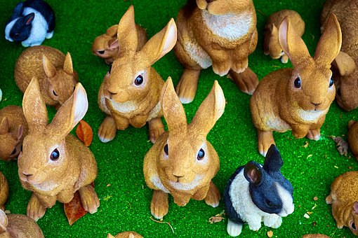 Rabbits, Bunny, Easter, Cute, Animal, Spring, White