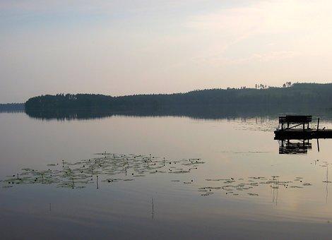 Lake, Silence, Evening, Marina, Water Lilies
