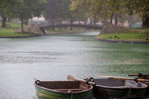 Row Boats, Rainy Day, Rain, Rain Drops, Park, Bridge