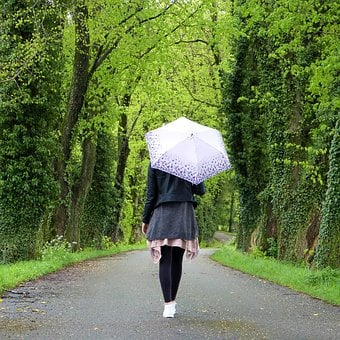 Young Woman, Girl, Umbrella, Rain, Out, In The Free