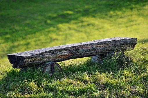 Bank, Rest, Nature, Landscape, Sit, Recovery, Sunbeam