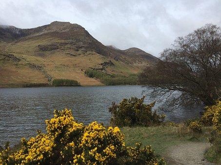 Lake District, Lake, Buttermere, England, Landscape