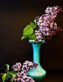 Lilac, Lilac Bouquet, Flowers, Spring, Decorative