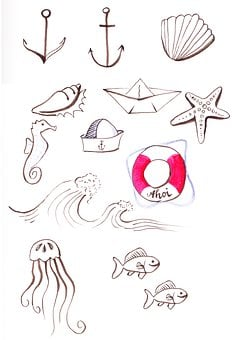Icon Set, Maritime, Sea, Drawing, Anchor, Shell