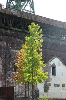Industrial Heritage, Building, Architecture, Bill, Tree