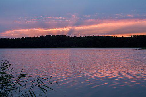 Müritz, Mecklenburgische Seenplatte, Conservation Park