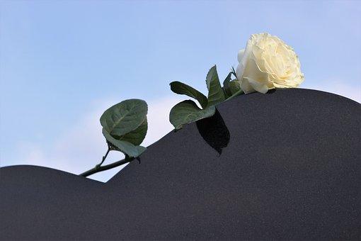 White Rose, Heart Gravestone, Love