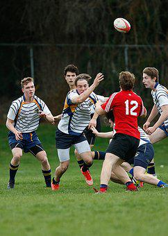 Rugby, Game, Athletes, Ball, Sport, Competition, Play