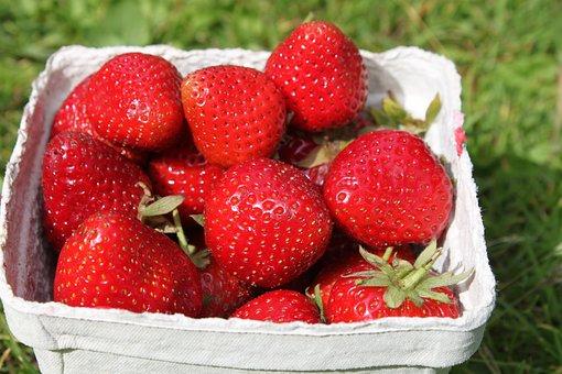 Strawberries, Berry, Red, Summer, Summer Time, Sweden