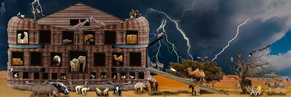 Religion, Animals, Noah, Ark, Archenoah, Bible, History