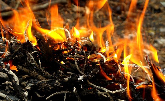 Fire, Spurts Of Flame, Flame, Macro, Bright, Burn