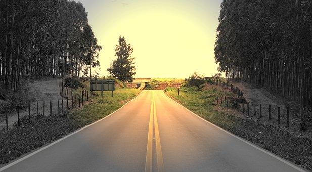 Road, Asphalt, Highway, Lane, Paving, Tree, Hot Road