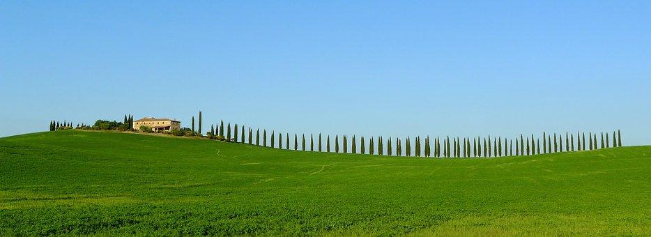 Toscana, Cypresses, Farmhouse, Scenic, Panorama, Green