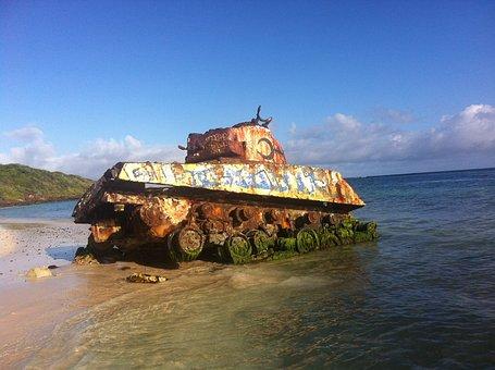 Tank, Beach, Puerto Rico, Snake, Caribbean Sea, Holiday