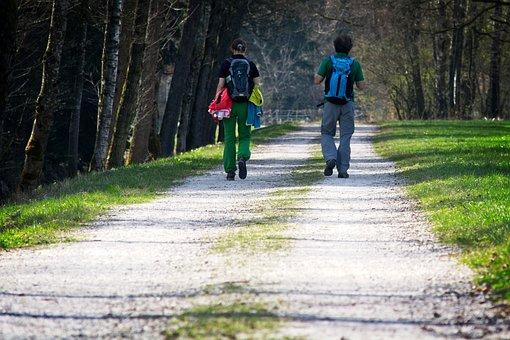 Hiking, Away, Walkers, Trail, Wanderer, Hike, Nature